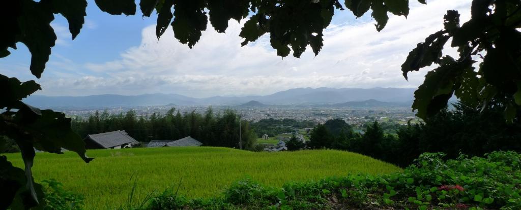Katuragi1